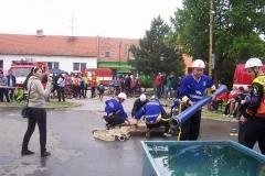 saratice2012v010